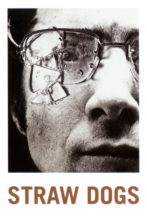 "Poster for the movie ""Straw Dogs"""