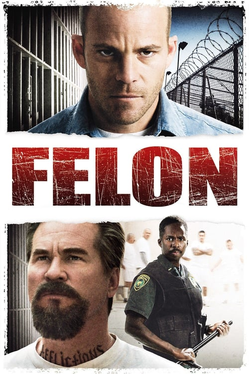 "Poster for the movie ""Felon"""