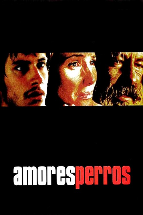 """Poster for the movie """"Amores perros"""""""